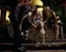 The Dog Who Saved Halloween (2011)